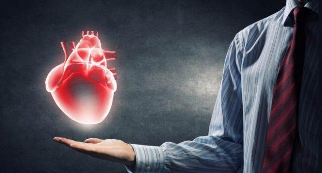 7 Circulatory System Diseases: Symptoms and Risks hold heart