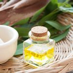 Amazing Benefits of Eucalyptus Oil