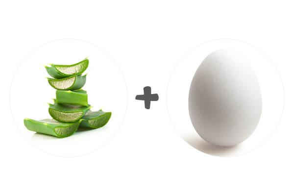 benefits of egg for hair